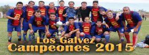 campeonato 2015