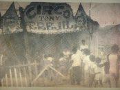 CIRCO TONY PEREJIL DEL PERU